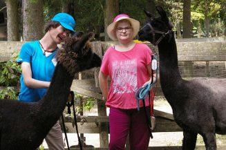 Lamas machen glücklich
